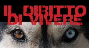 Sportello diritti degli animali